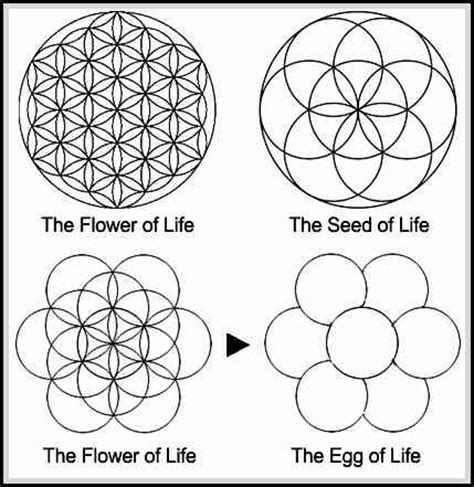 Flower of Life Meaning and Symbolism to Know