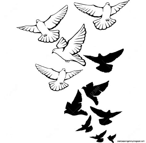 Flying Bird Drawing Tattoo | Wallpapers Gallery