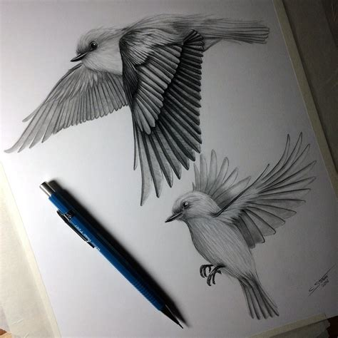 Flying Bird Sketches | www.imgkid.com - The Image Kid Has It!