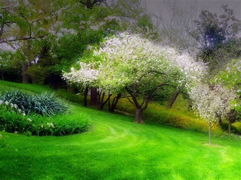 Fondos de pantalla de Primavera, Wallpapers HD