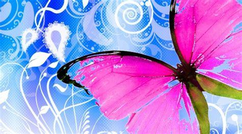 Fondos De Pantalla Gratis De Mariposas   Imagenes De Mariposas