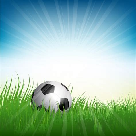 Football ball on a field Vector | Free Download