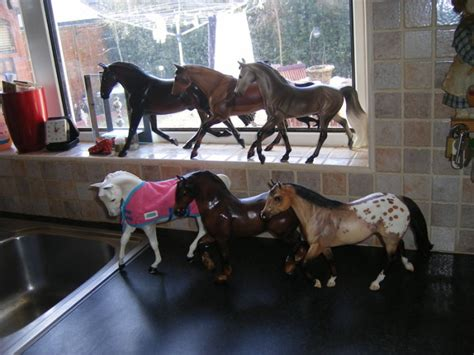 For Sale Big Selectioncollectible Schleich Horses For Sale ...