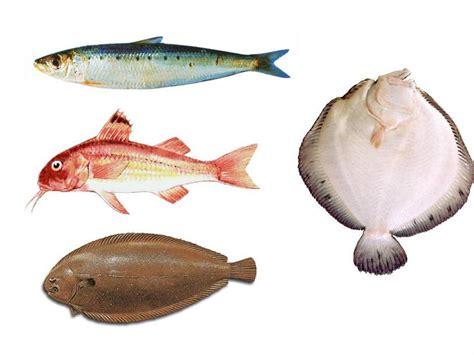 Formas de preparación y cocción del pescado