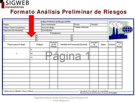 formato de analisis de riesgo an 193 lisis preliminar de ...