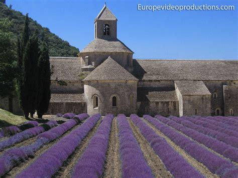 Foto: Campo de Lavanda en Provenza en Francia