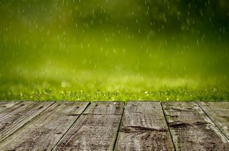 Foto gratis: Primavera, De Fondo, Verde, Hierba - Imagen ...
