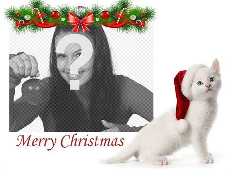 Fotomontaje de Navidad con un gatico para subir tu foto ...