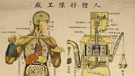 Fotos: Anatomía 'made in China': El cuerpo humano funciona ...