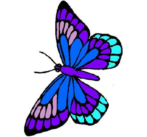 Fotos de mariposas coloreadas   Imagui