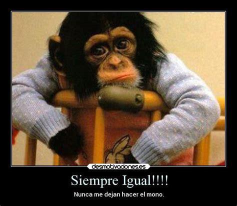 Fotos de monos graciosos con frases - Imagui