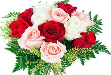Fotos De Rosas Rojas Animadas Y Con movimiento   Imagen De ...