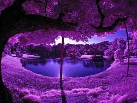 fotos e imagenes con paisajes hermosos y naturales ...