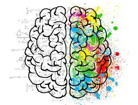 Fotos gratis : cerebro, psicología, idea, copas, amor ...