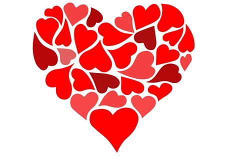 Fotos gratis : flor, pétalo, amor, corazón, patrón, rojo ...