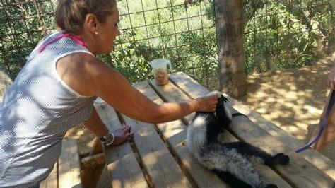 Fotos varias del zoo: Zoo Castellar, Castellar de la ...