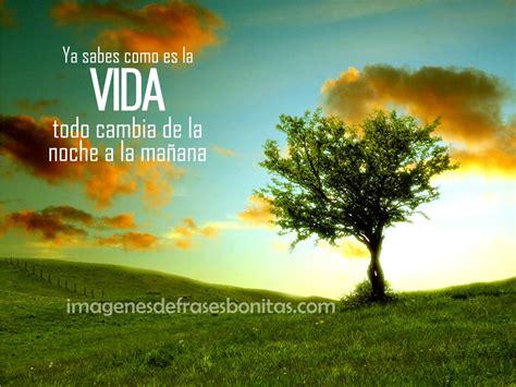 Frases Bellas Con Imagenes Para Compartir | Imagenes De ...