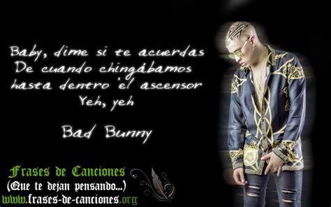 Frases de amor de Bad Bunny   Frases de Canciones (Que te ...