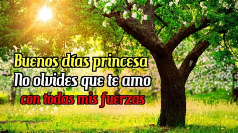 Frases Romanticas Buenos Dias Para Compartir Con Tu Pareja ...