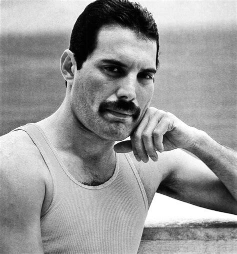 Freddie Mercury - HQ - Freddie Mercury Photo (31872940 ...