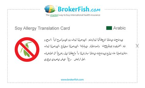Free Allergy Translation Cards | Many Languages & Convenient