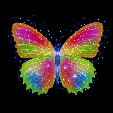 Free colorful butterfly vector free vector download ...