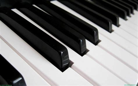 Free Hd Piano Keys Wallpapers Download Black White