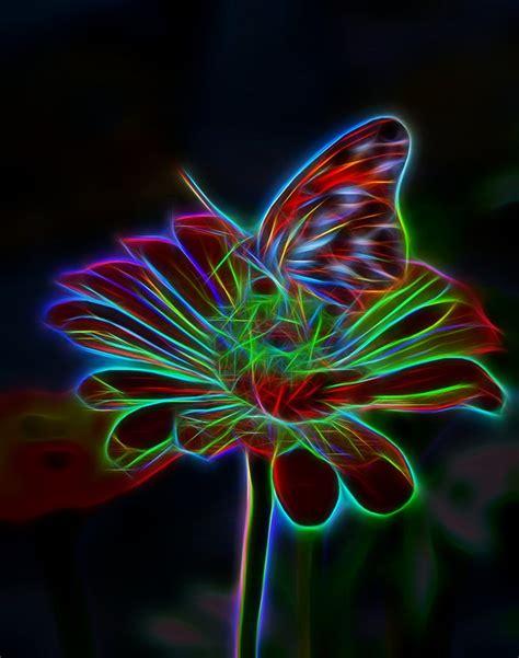 Free illustration: Flower, Butterfly, Light, Effect   Free ...