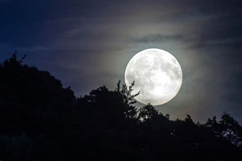Free photo: Full Moon, Evening Sky, Moonlight - Free Image ...