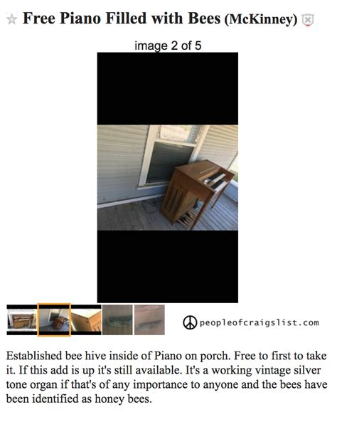 Free piano filled with bees - People of Craigslist