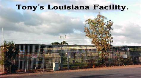 | Free Tony | Save Tony | Big Cat Rescue Corporation is ...