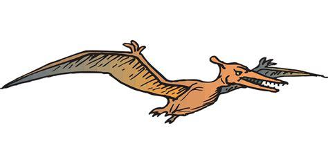 Free vector graphic: Bird, Flying, Wings, Dinosaur   Free ...