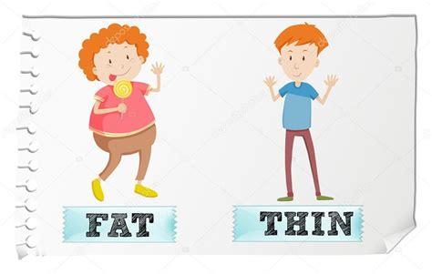 Frente a adjetivos gordo y delgado — Vector de stock ...