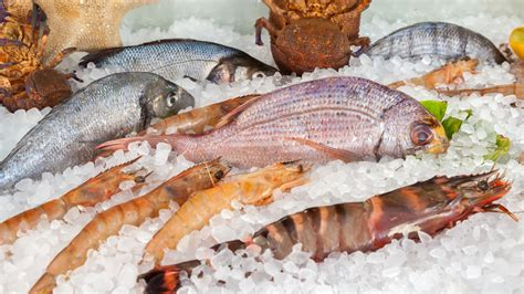 Fresh Fish On Ice Free Stock Photo - Public Domain Pictures
