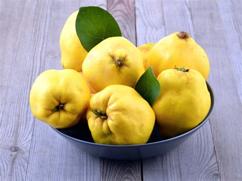 Fruit Quince Related Keywords & Suggestions - Fruit Quince ...