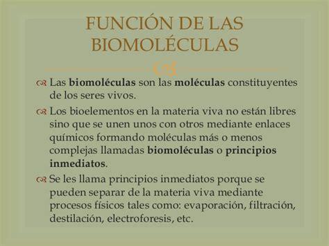 FUNCIONES BIOLÓGICAS DEL AGUA EN LOS SERES VIVOS ...