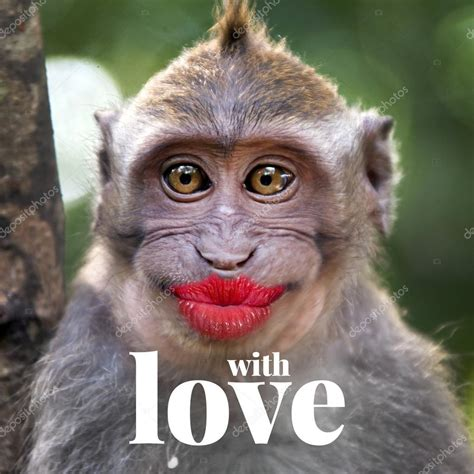 Funny monkey with a red lips — Stock Photo © watman #70260001