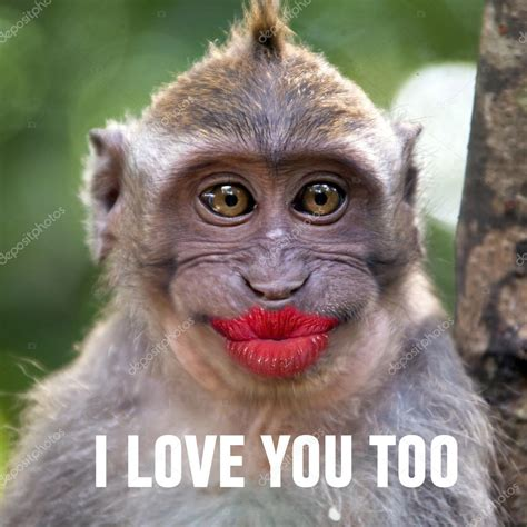 Funny monkey with a red lips — Stockfoto © watman #69189435