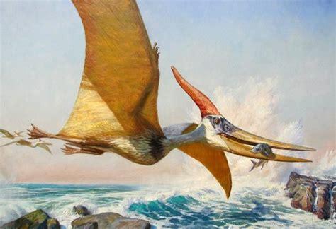 Galería de imágenes: Dibujos de dinosaurios