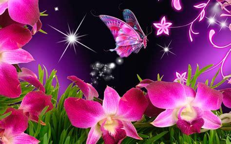 Galería de imágenes: Imágenes de mariposas