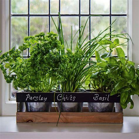 Garden Planter Box Wooden Indoor Herb Kit Kitchen Seeds ...