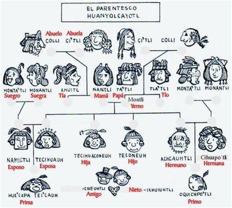 genealogia nahuatl | Nahuatl | Parentesco, Palabras en ...