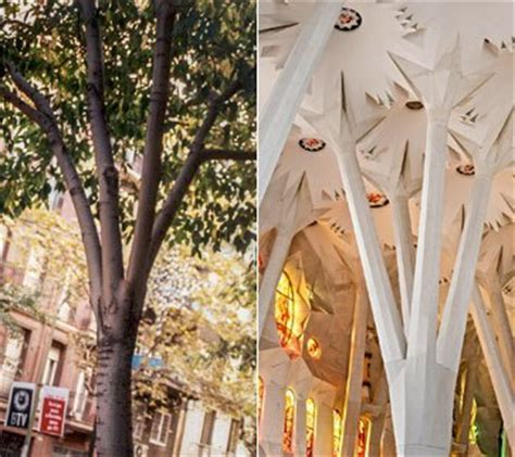 Geometry - Sagrada Familia