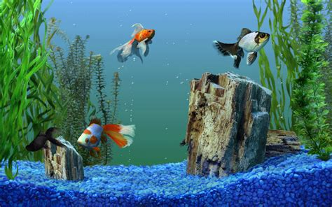 Get Windows Dancer & MCE Aquarium, Space screen-savers in ...