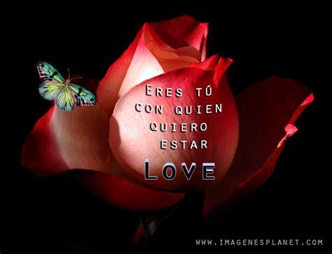 Gif animadas con rosas y frases   Imágenes de Amor con ...