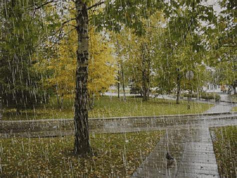 GIFS DE NATURALEZA: Paisajes animados de lluvia