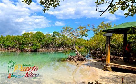 Gilligan's Island - Puerto Rico - Cayo Aurora / Gilligan's ...