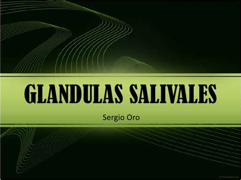 Glandula Submaxilar Anatomia | New Style for 2016-2017