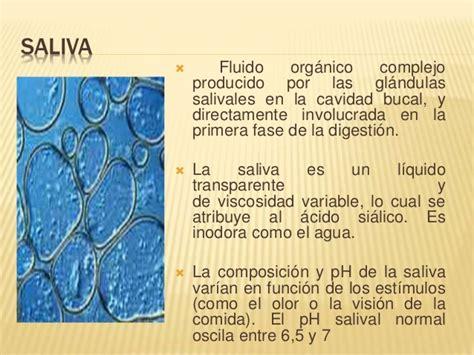 Glandulas Salivales Histologia images