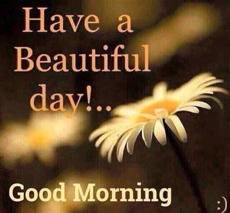 Good Morning Have A Beautiful Day | www.pixshark.com ...